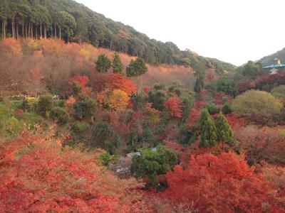 kyoto09 082.jpg