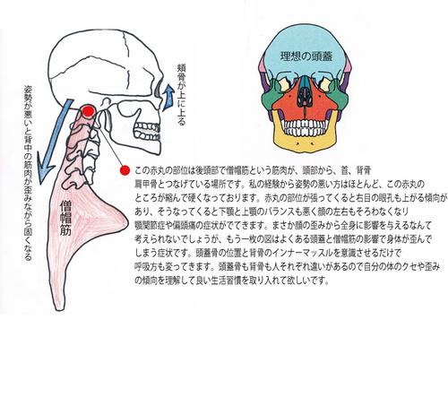 図面2.jpg